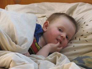 """Trimetis Nojus, kaip ir jo mama, labiausiai mėgsta vilko ir zuikio nuotykius animaciniame filmuke """"Na, palauk"""". Jurgitos Andrulytės nuotr."""