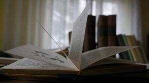 Knyga - žvilgsnis į pasaulį kitų žmonių akimis. J. Banienės nuotr.